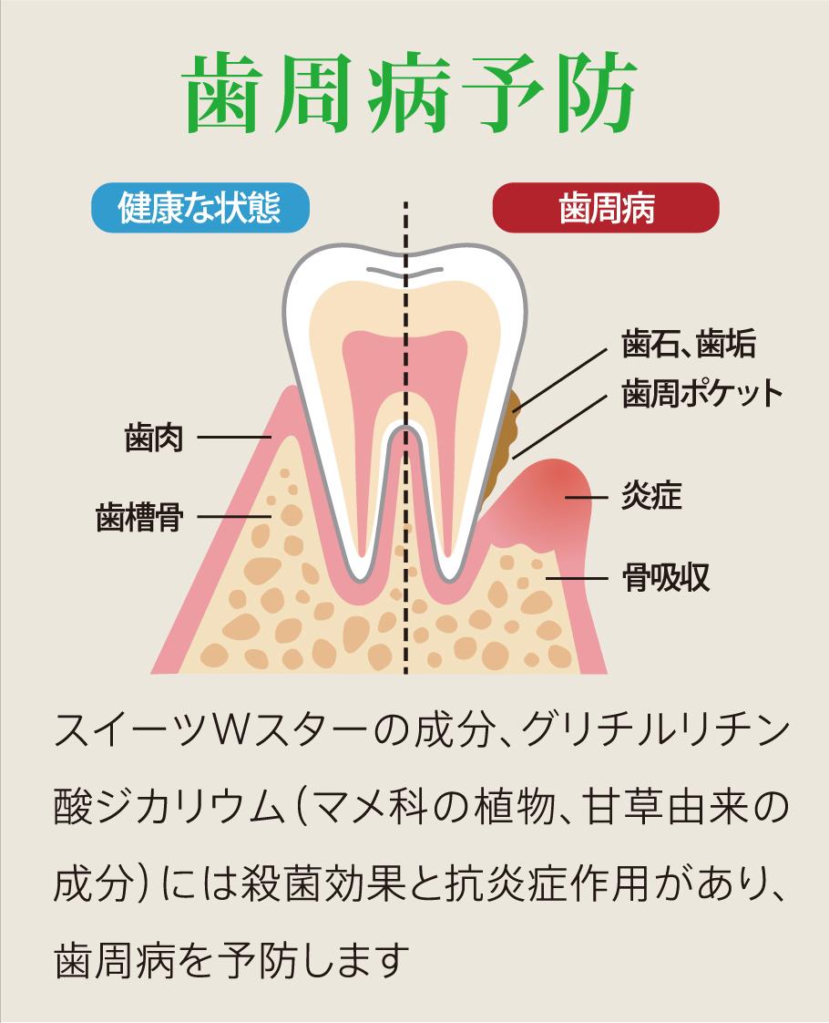 歯周病予防 スイーツWスターの成分、グリチルリチン酸ジカリウム(マメ科の植物、甘草由来の成分)には殺菌効果と抗炎症作用があり、歯周病を予防します