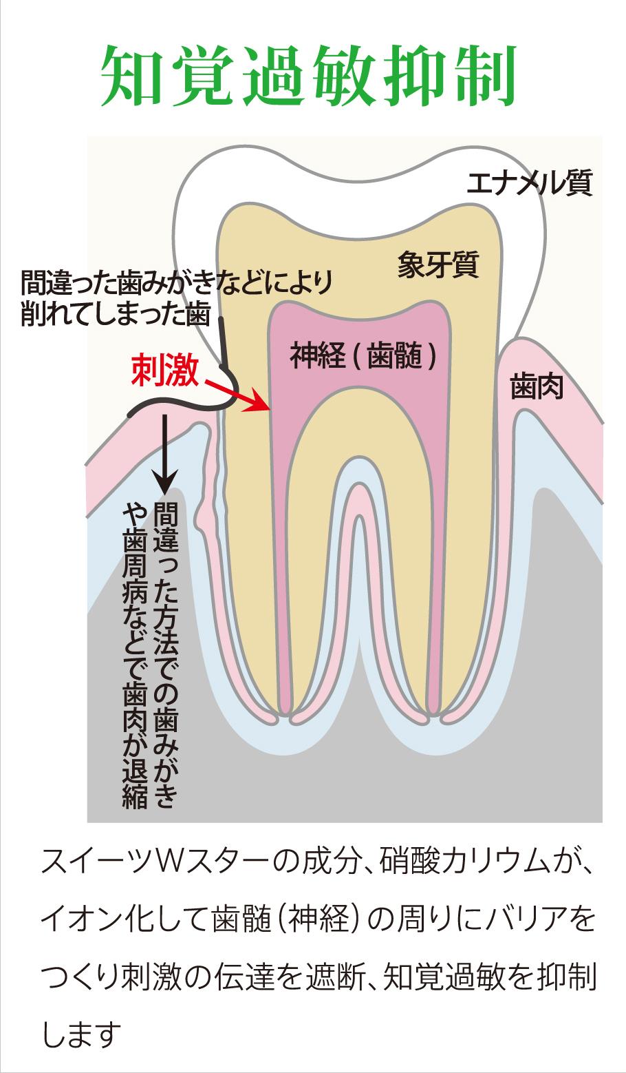 知覚過敏抑制 スイーツWスターの成分、硝酸カリウムが、イオン化して歯髄(神経)の周りにバリアをつくり刺激の伝達を遮断、知覚過敏を抑制します