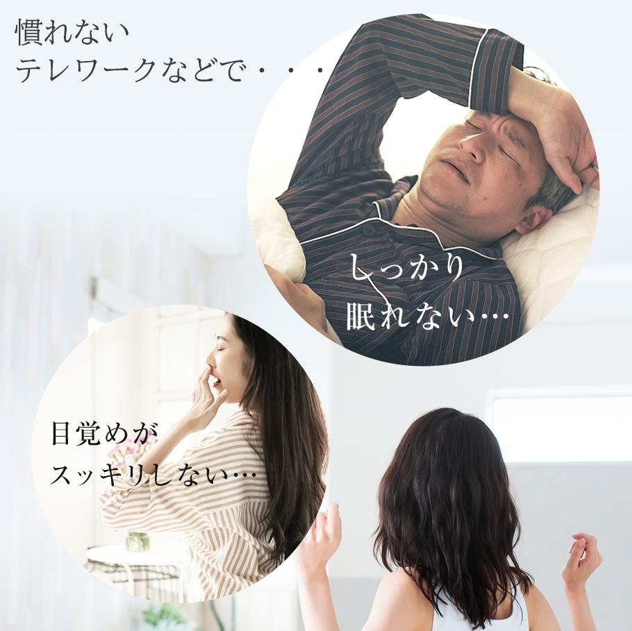 本品にはL-テアニンが含まれます。L-テアニンには、夜間の良質な睡眠をサポートする機能があることが報告されています。